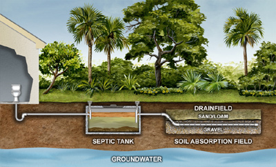 Septic Drain Field